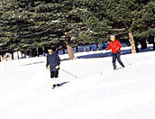 Guests enjoy Cross-Country Skiing on groomed trails in town.